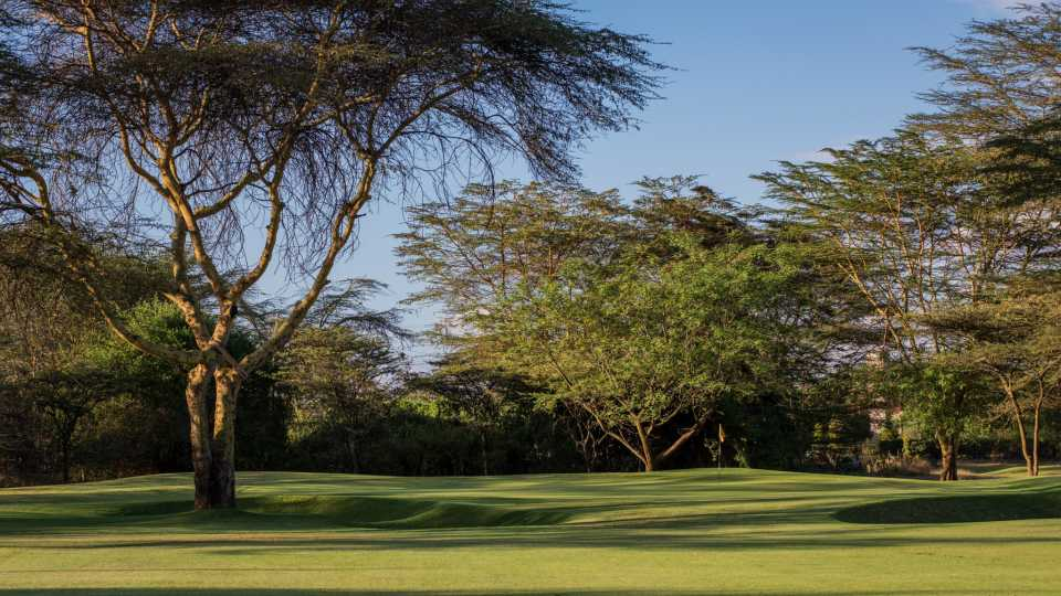 Many holes are well guarded by acacia trees.