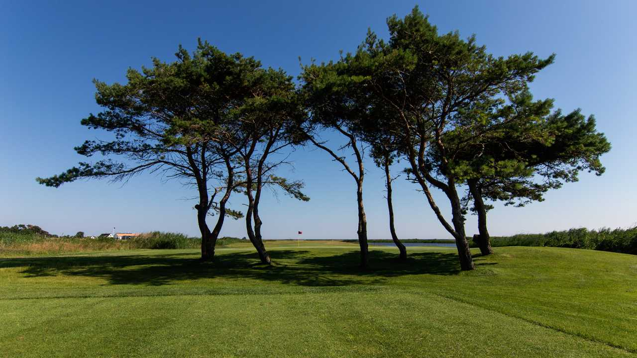 Ljunghusens Golf Club, Sweden